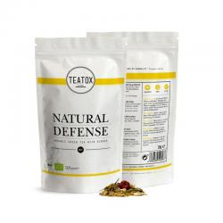 Natural defense green tea ginger bio refill